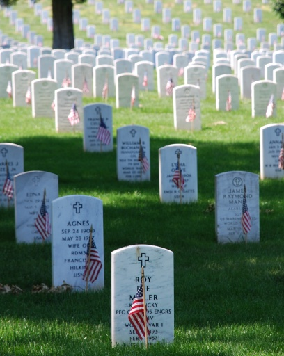 Graves at Arlington National Cemetary